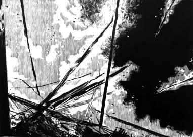Fenómeno (2016) - Tinta china y acrílico sobre papel - 86 x 120 cm